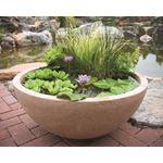 Aquatic Patio Pond Water Garden, 24-Inch Round 2