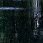 Black DyeMond Pond Dye- RTU 2