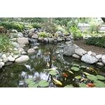 Complete Pond Kit 21 Feet X 26 Feet  Large  9PL-2