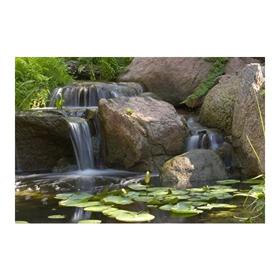 PRO Beneficial Bacteria For Ponds Dry, 9 Lb.-2