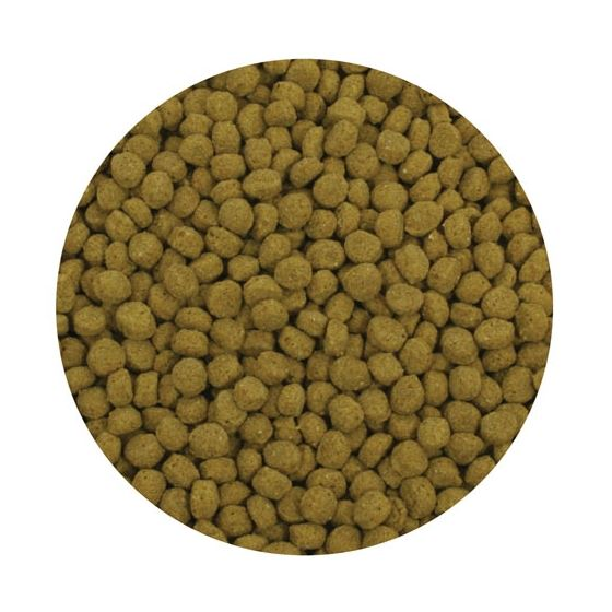 Premium Cold Water Fish Food Pellets - 20 kg-2