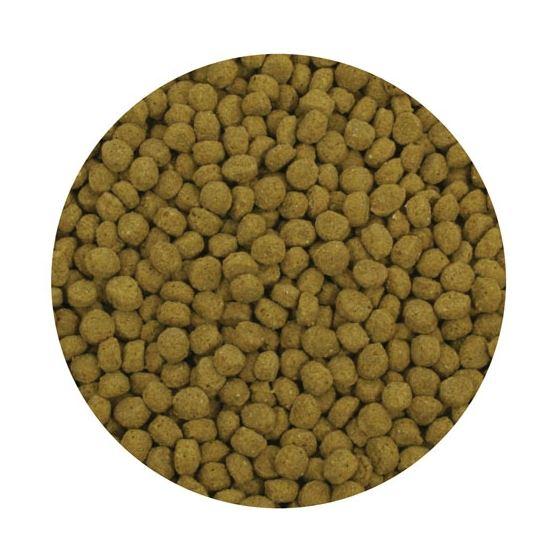 Premium Staple Fish Food Pellets - 20 Kg Bag-2