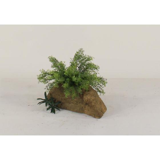 Pot Rock - 006-2