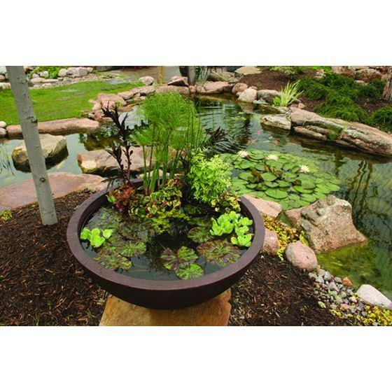 Aquatic Patio Pond Water Garden, 24-Inch Round 4