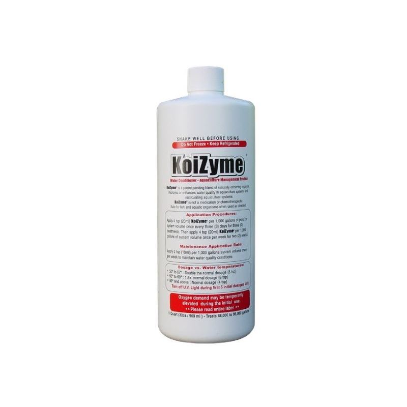 Koizyme Cold Water Bacteria- Reduce the threat cau
