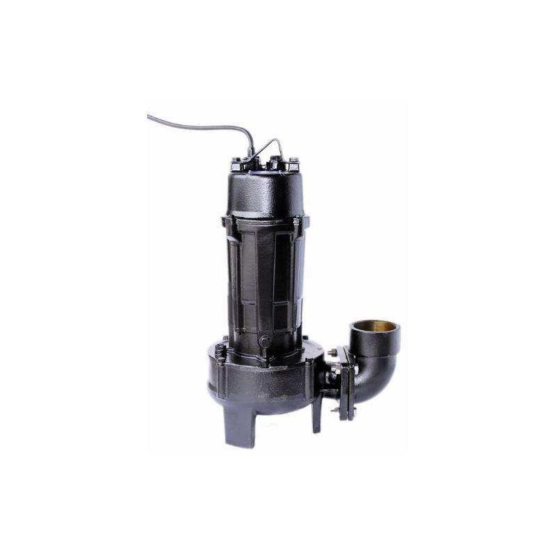 2 HP 1 Phase CVC Series Large Volume Pump