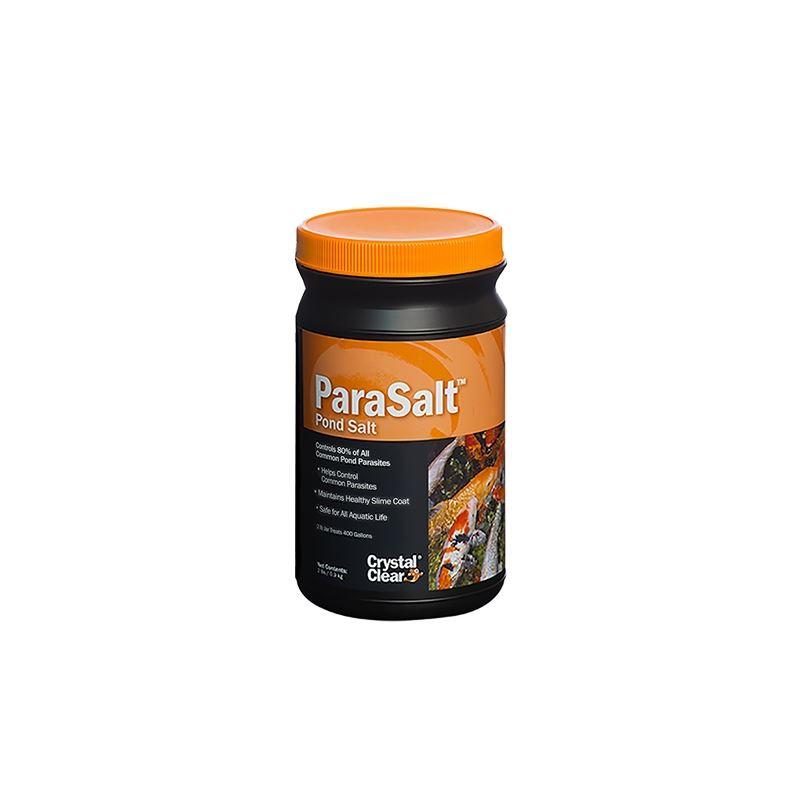 ParaSalt 2