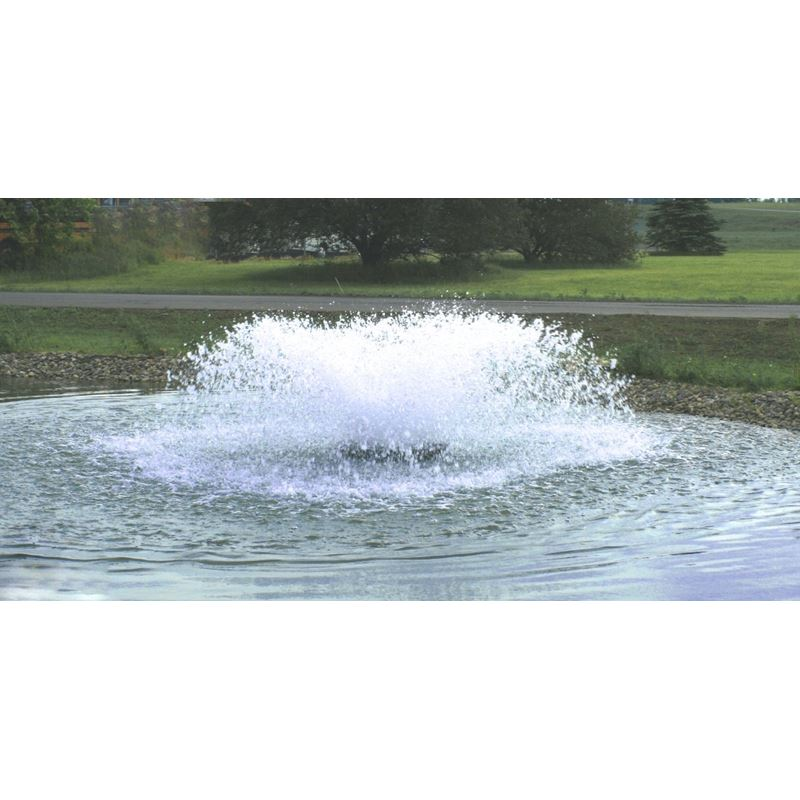 3HP Aerator 3ph (300